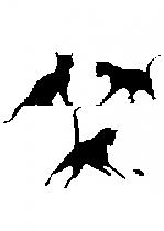 Sticker chats joueurs découpée à la forme dans vinyle de couleur unie. Ce visuel trop mignon fera craquer vos enfants.