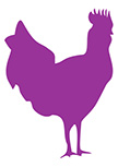 Sticker coq
