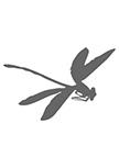 Sticker libellule découpée à la forme dans vinyle de couleur unie.