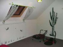 Sticker libellule, idéal pour décorer vos murs en vente sur Idzif.com
