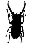 Sticker Pinching Bug