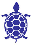 Sticker Tortue