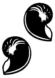 Stickers 2 Nautilus