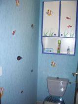 Stickers 4 algues, planche de 4 stickers algues en vente sur idzif.com