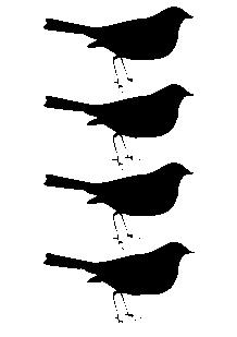Stickers 4 Oiseaux