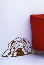Stickers Bulldog anglais