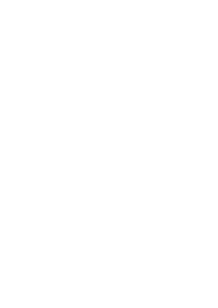 Stickers Dragon chinois.