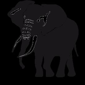 Le stickers éléphant indien en noir pour une décoration exotique