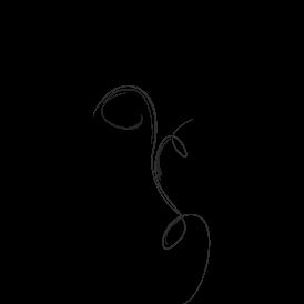 Le stickers fée en noir pour décorer l\'intérieur sur le thème des fées