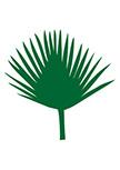 Stickers Feuille de Palmier