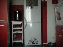 Stickers frigo bulldog