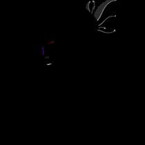 Le stickers geisha plume en noir pour une décoration exotique