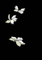 Stickers libellules et fleurs