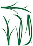 stickers muraux herbes découpés à la forme dans vinyle de couleur unie. Planche de 4 stickers herbes