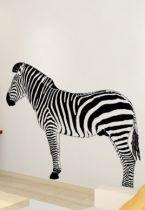 stickers zebre afrique