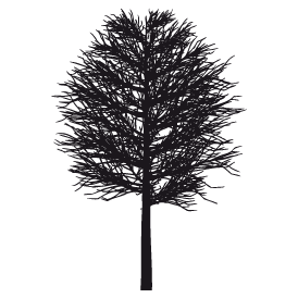 Le stickers arbre hivernal en noir pour décorer l\'intérieur sur le thème de la nature