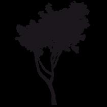 Le stickers arbre salon en noir pour décorer l\'intérieur sur le thème de la nature