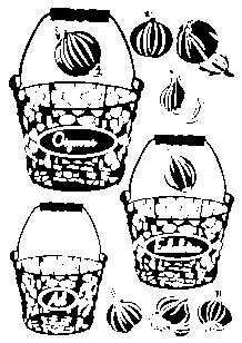 Stickers oignons et ails