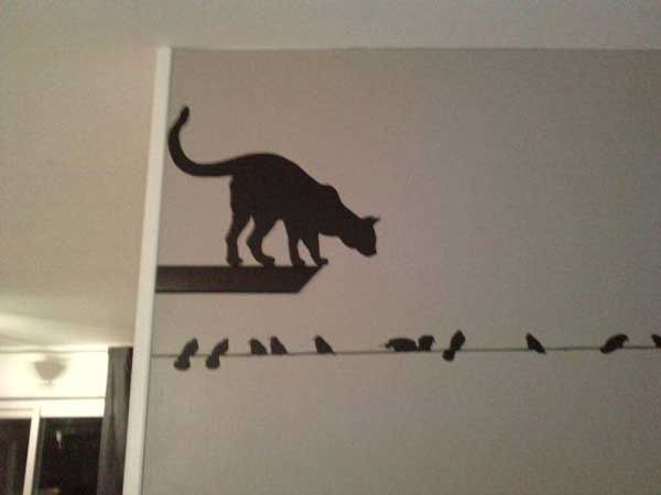 stickers oiseaux chat