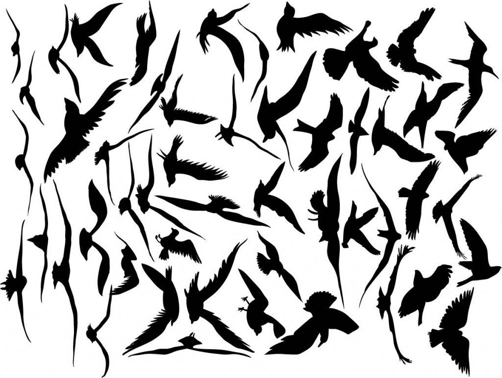 Stickers oiseaux pour compléter une décorations avec des oiseaux noirs sur un fil