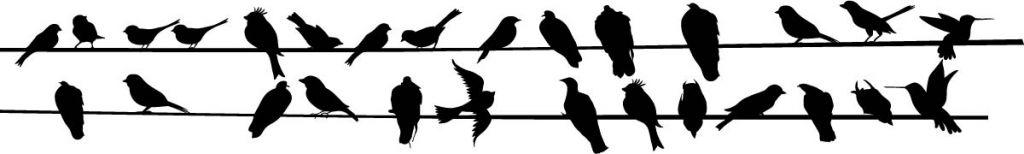 Stickers oiseaux noirs sur fil électrique pour la déco du salon
