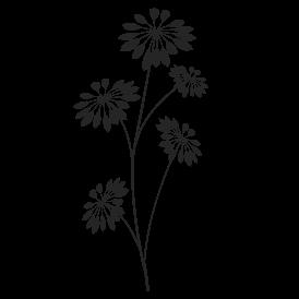 Le stickers plantes pétales vous permettra de décorer un support (mur, meuble) avec un stickers nature