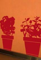 Stickers herbes aromatisées découpés à la forme dans vinyle de couleur unie. Comprend 4 stickers pots d\'herbes aromatisées et un sticker arrosoir.