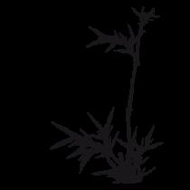 Le stickers pousses de bambou asiatique en noir vous permettra d\'apporter la nature sur vos murs