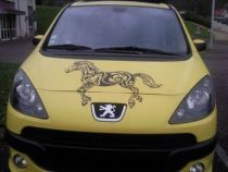 stickers voiture cheval