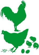 Toute la famille volaille est là, le coq, la poule, les poussins et les grains. Ces stickers volaille permettront de créer un décor sur la basse cour